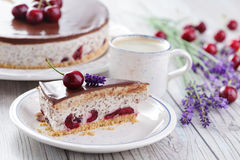 Straciatella cheese cake Royalty Free Stock Image