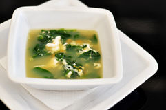 Straciatella Soup. On black background, isolated Stock Photography
