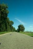 Strada abbandonata Fotografia Stock