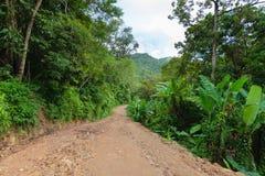 Strada abbandonata della giungla nelle montagne Fotografie Stock