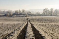 Strada agricola su una mattina fredda di inverno con nebbia ed il sole Immagine Stock Libera da Diritti