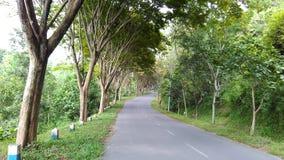 Strada al bacino idrico Tulungagung di Wonorejo Immagine Stock