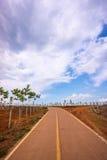 Strada al cielo Fotografie Stock Libere da Diritti