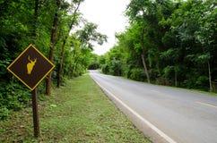Strada al parco nazionale Immagini Stock Libere da Diritti