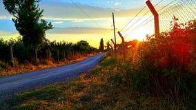 Strada al tramonto Fotografie Stock Libere da Diritti
