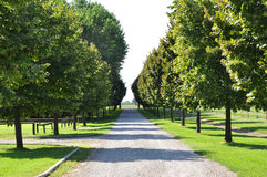 Strada alberata. Walk park outside Bologna city Royalty Free Stock Photos