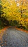 Strada all'autunno, Geres Immagini Stock Libere da Diritti