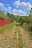Strada alla campagna della foresta Fotografie Stock