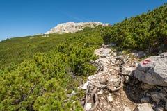 Strada alla cima della montagna Paesaggio della dolomia Passaggio di Oclini, Tirolo del sud, Italia Fotografia Stock Libera da Diritti