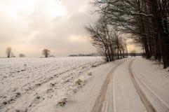 Strada alla foresta di inverno Fotografia Stock Libera da Diritti