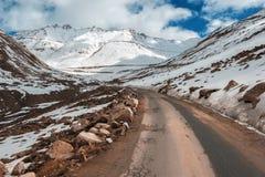 Strada alla montagna dell'Himalaya nel ladak, leh India Fotografie Stock