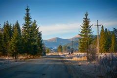 Strada alle montagne Goverla carpathians l'ucraina immagine stock libera da diritti