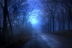 Strada allineata albero