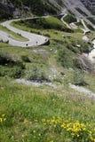 Strada in alpi italiane Immagine Stock Libera da Diritti