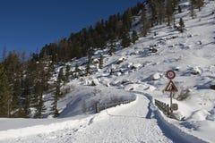 Strada alpina della montagna Fotografia Stock