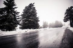 Strada alpina dello Snowy Fotografie Stock Libere da Diritti
