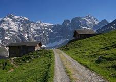 Strada alpina svizzera Fotografia Stock
