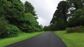 Strada asfaltata al connemara in Irlanda 14 video d archivio