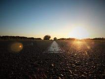 Strada asfaltata al tramonto Fotografia Stock Libera da Diritti