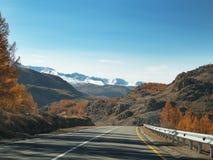 Strada asfaltata in autunno ad alba Immagini Stock