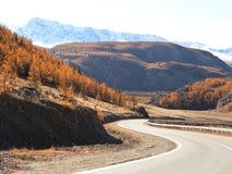 Strada asfaltata in autunno ad alba Immagini Stock Libere da Diritti