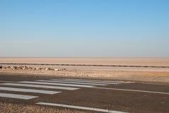 Strada asfaltata con l'attraversamento in deserto Fotografie Stock Libere da Diritti