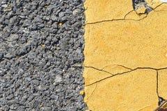 Strada asfaltata con la pianta strisciante Fotografia Stock Libera da Diritti