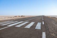 Strada asfaltata in deserto all'orizzonte Fotografie Stock Libere da Diritti