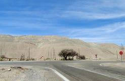 Strada asfaltata nel deserto di Atacama Immagine Stock Libera da Diritti