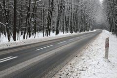 Strada asfaltata nell'inverno Immagini Stock Libere da Diritti