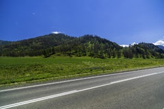 Strada asfaltata nelle montagne di Altai Immagine Stock