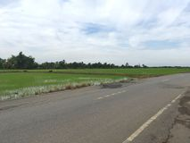 Strada asfaltata in paese Chachoengsao Tailandia fotografie stock
