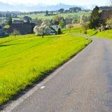 Strada asfaltata in Svizzera Fotografie Stock Libere da Diritti