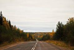 Strada asfaltata vuota in autunno Fotografia Stock