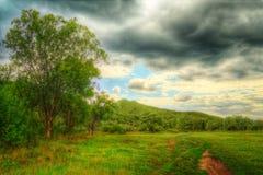 Strada attraverso il campo alla montagna Fotografie Stock