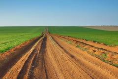 Strada attraverso il campo verde Fotografia Stock Libera da Diritti