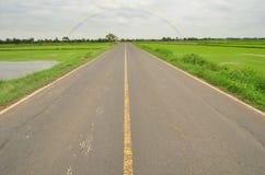 Strada attraverso il giacimento del riso nell'agricoltura della stagione Fotografia Stock Libera da Diritti