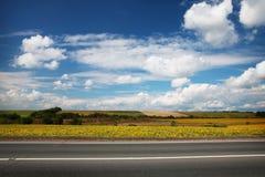 Strada attraverso il giacimento giallo del girasole Fotografie Stock Libere da Diritti