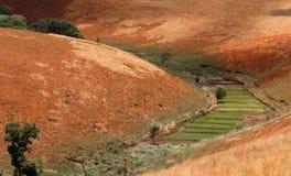 Strada attraverso il paesaggio della campagna dell'altopiano del Madagascar Immagine Stock