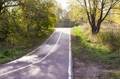 Strada attraverso il parco di autunno stagionale, fondo immagine stock libera da diritti