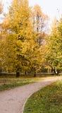 Strada attraverso il parco di autunno stagionale, fondo fotografia stock libera da diritti