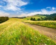 Strada attraverso il prato sul pendio di collina ad alba Fotografia Stock