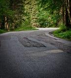 Strada attraverso la foresta Immagini Stock Libere da Diritti