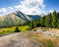 Strada attraverso la foresta alle alte montagne Fotografie Stock