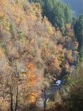 Strada attraverso la foresta con i colori di autunno nel forez di livradois, auvergne, Francia immagine stock
