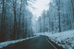 Strada attraverso la foresta invernale fotografie stock libere da diritti