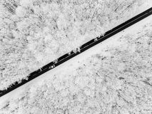 Strada attraverso la foresta nevosa fotografie stock libere da diritti