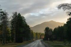 Strada attraverso la foresta verso le montagne ed il tramonto fotografie stock libere da diritti