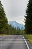 Strada attraverso la sosta nazionale del ghiacciaio Fotografie Stock