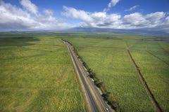 Strada attraverso terreno coltivabile. Immagini Stock